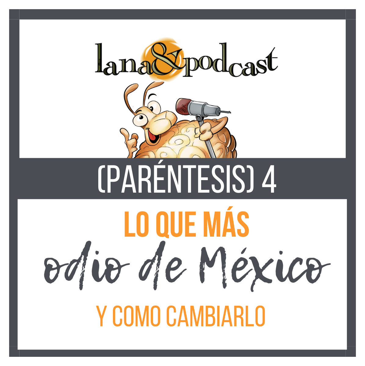 Lo que odio de México. Paréntesis 4