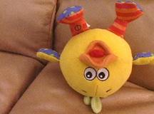 RT029-Maggie's Duck
