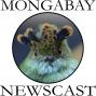 Artwork for Mongabay Newscast #1: Panama's Barro Blanco Dam
