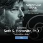 Artwork for Seth Horowitz - The Auditory Brain
