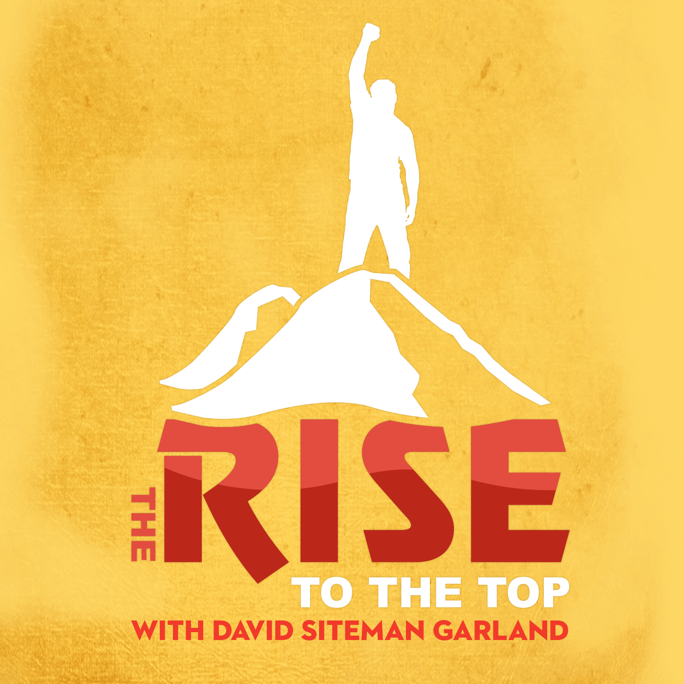 The Rise To The Top with David Siteman Garland