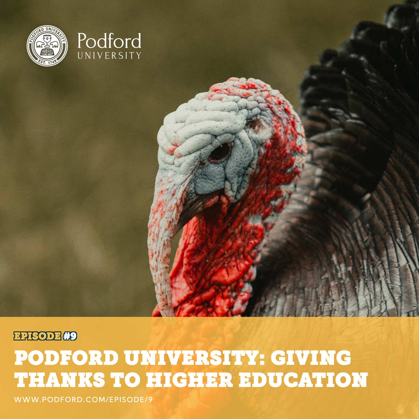 Podford University: Giving Thanks to Higher Education