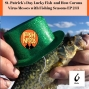"""Artwork for St. Patrick's Day Lucky Fish and How """"THE"""" Virus Messes with Fishing Seasons EP 243"""