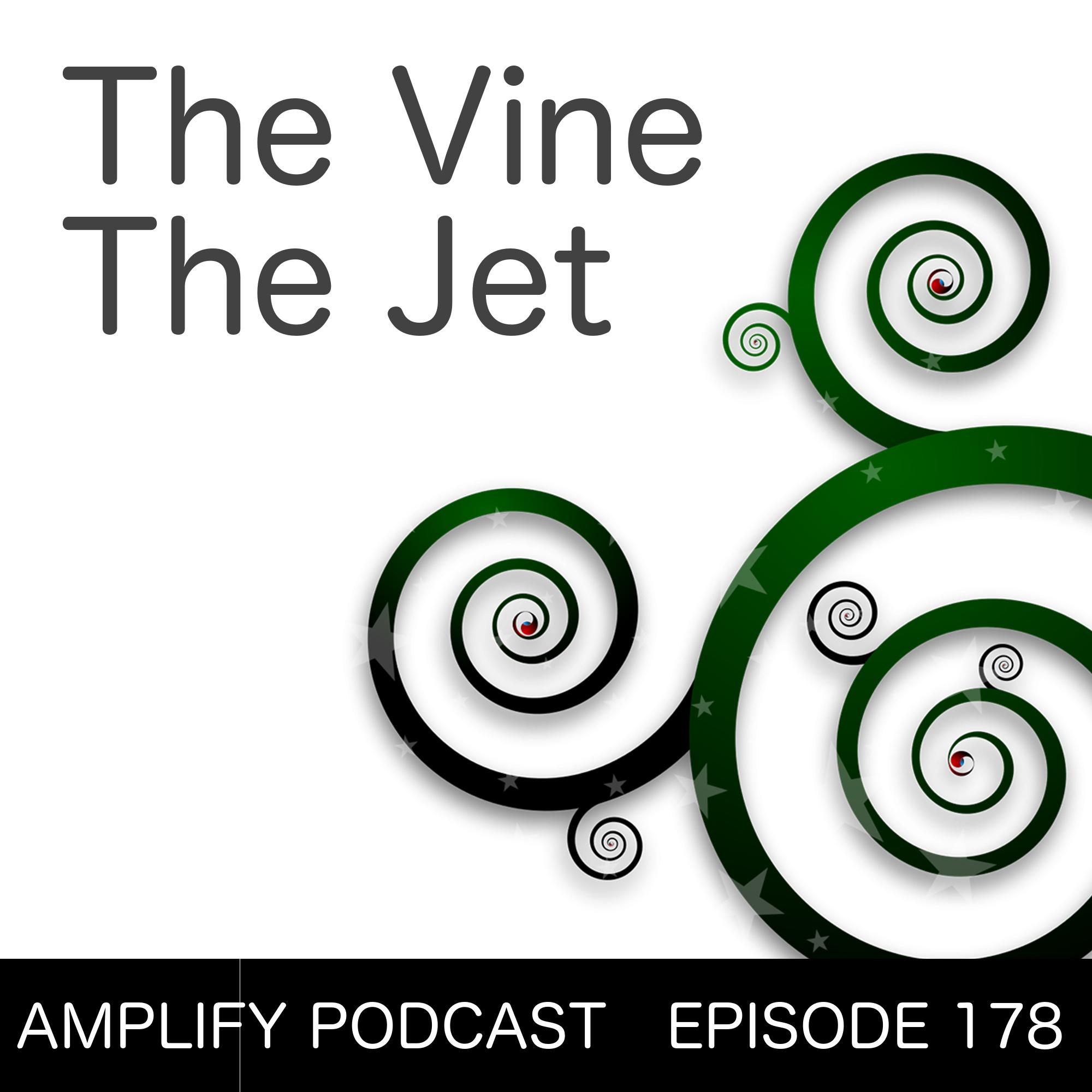 The Vine The Jet