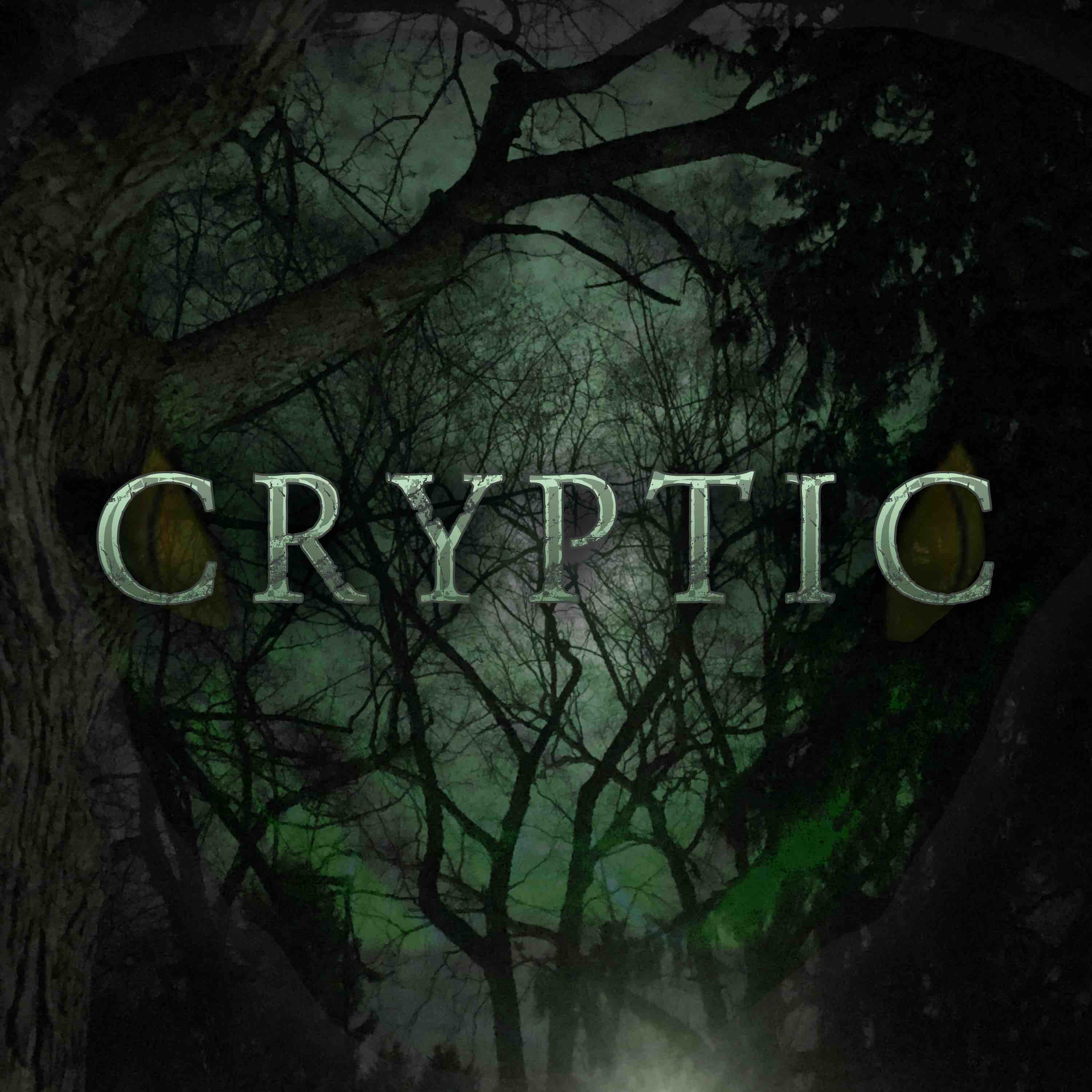 """Cryptic"" Podcast"