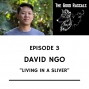 Artwork for Ep 3 David Ngo - Living in a Sliver
