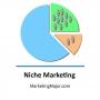 Artwork for Power of Niche Markets