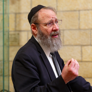 Rabbi Aaron Lopiansky's Shiurim