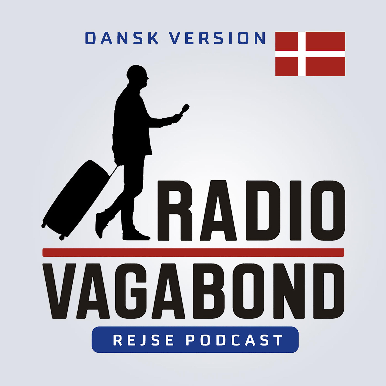 Radiovagabond show art