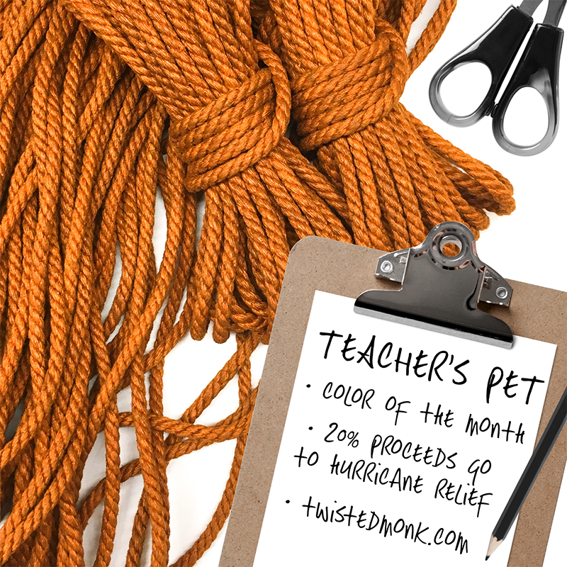 Teacher's Pet color of the Month
