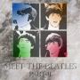 Artwork for Rock N Roll Archaeology Episode 8: Meet The Beatles Part 2