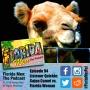 Artwork for E094 - Listener Quickie: Cajun Camel vs Florida Woman