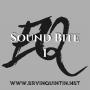 Artwork for Sound Bite 1: Authenticity