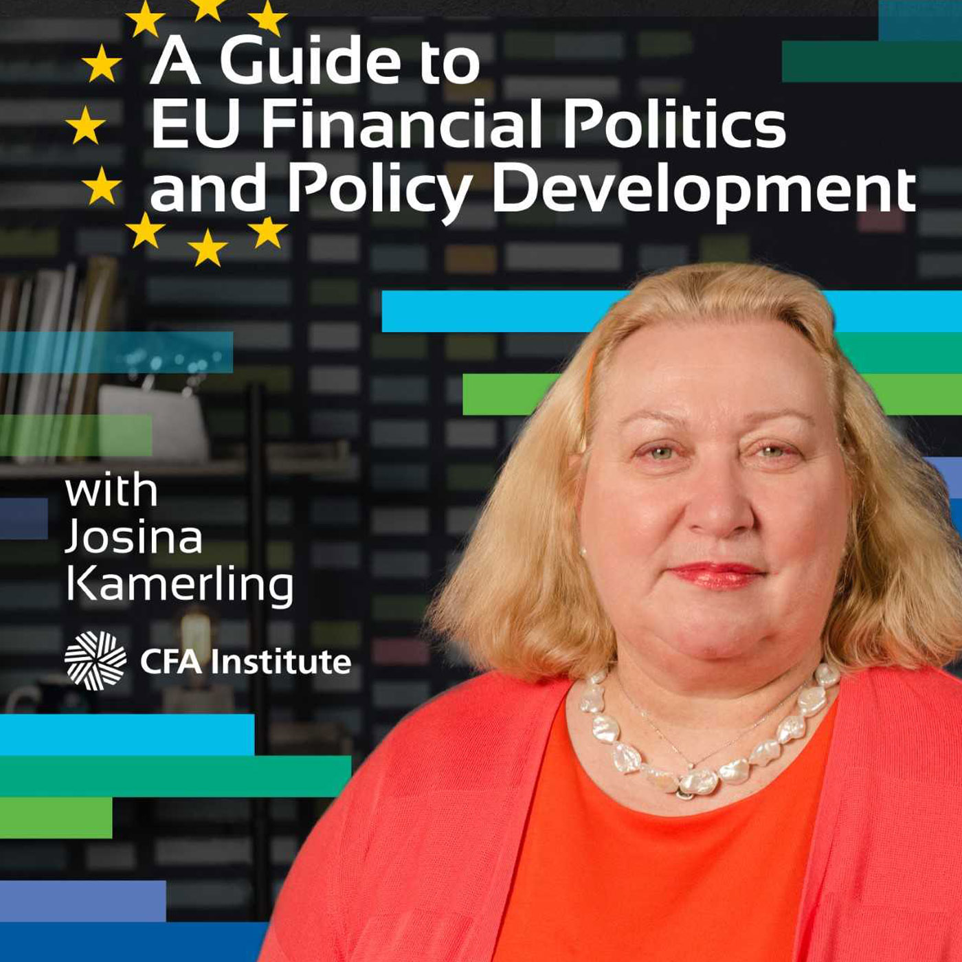 A Guide To EU Financial Politics and Policy Development show art