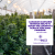 TRICHOMES Morning Buzz   Canadian Cannabis Revenue Helps to Boost the Country's Agriculture Amid Pandemic show art