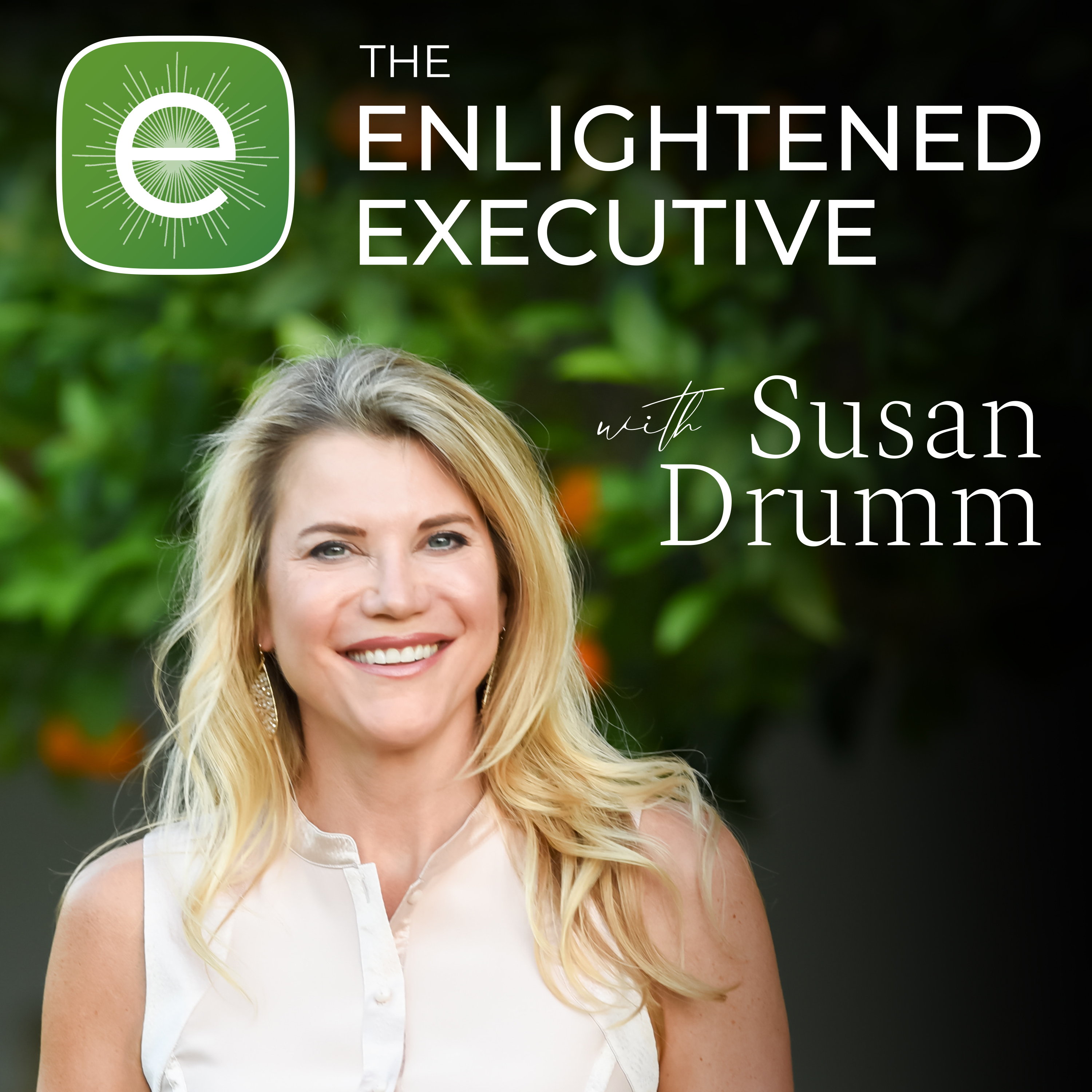 The Enlightened Executive show art