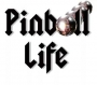 Artwork for Episode 4 - Terry DeZwarte - Owner Pinball Life