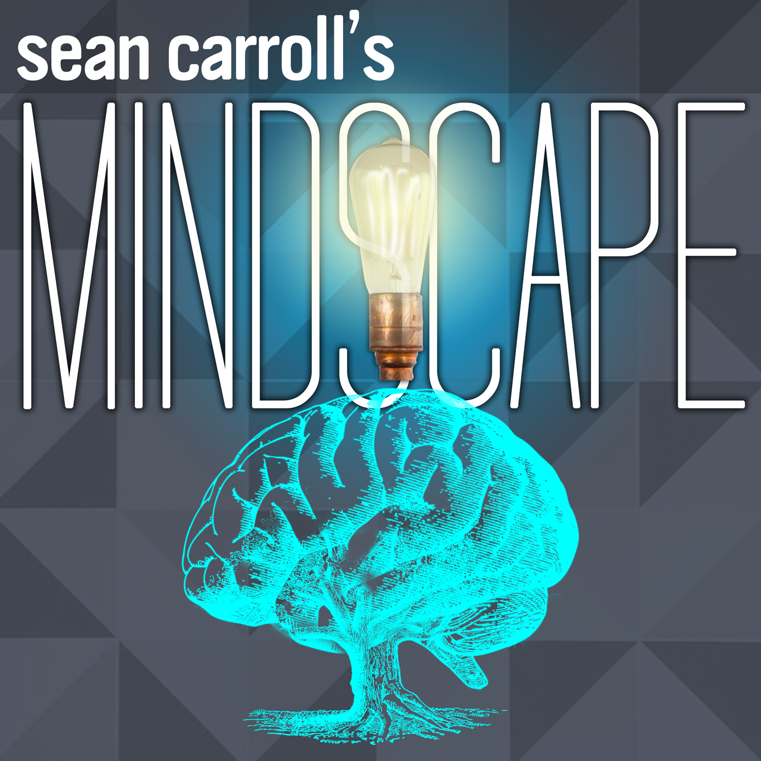 Sean Carroll's Mindscape: Science, Society, Philosophy, Culture, Arts, and Ideas show art