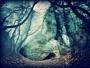 "Artwork for ME17 - ""Little Wolf Moon"""