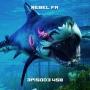 Artwork for Rebel FM Episode 458 - 05/29/2020