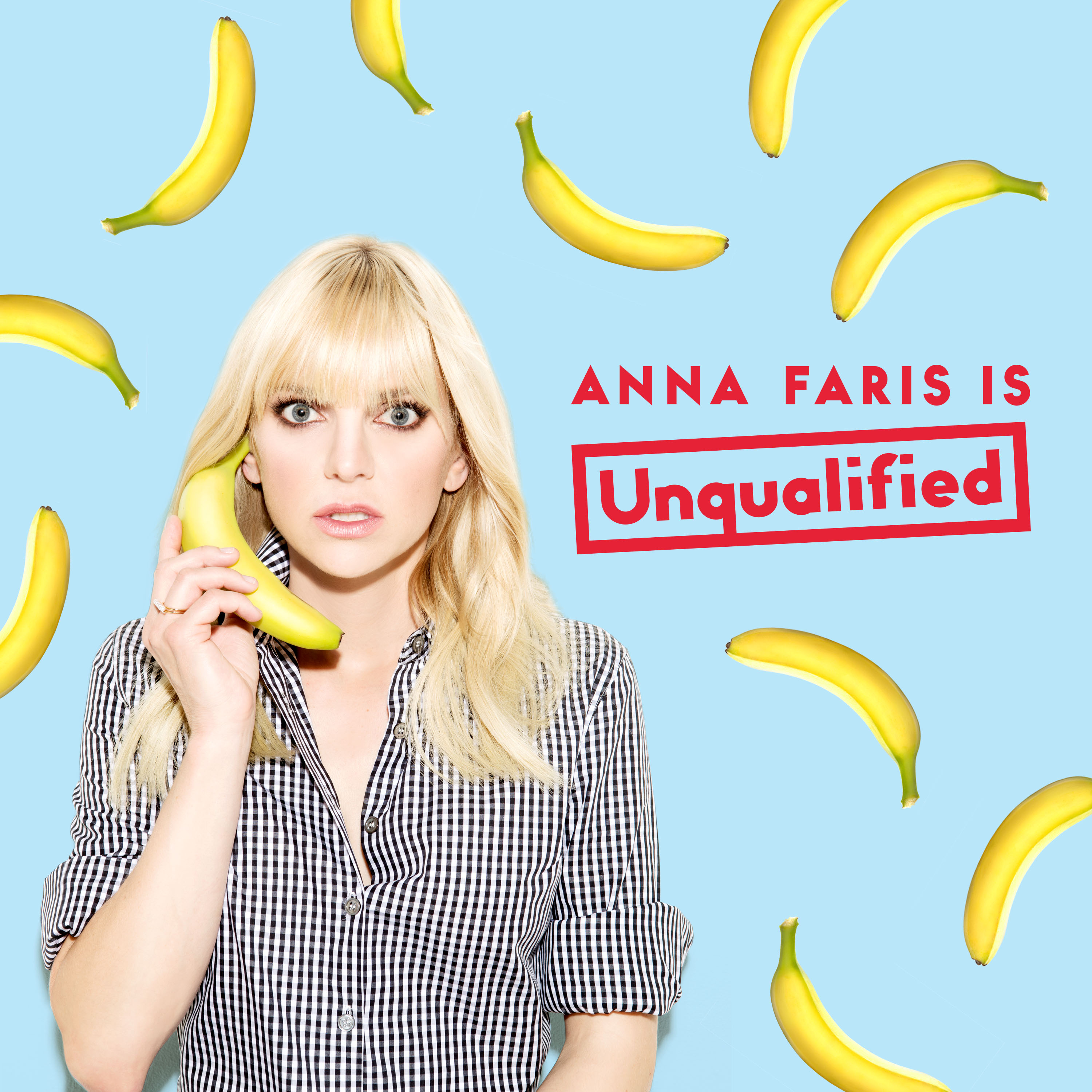 Anna Faris Is Unqualified logo