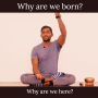 Artwork for Why are we born? Why are we here?