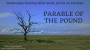 Artwork for Parable of the Pound