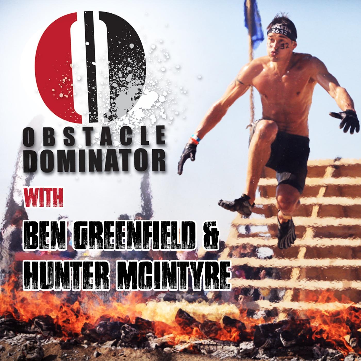Obstacle Dominator logo