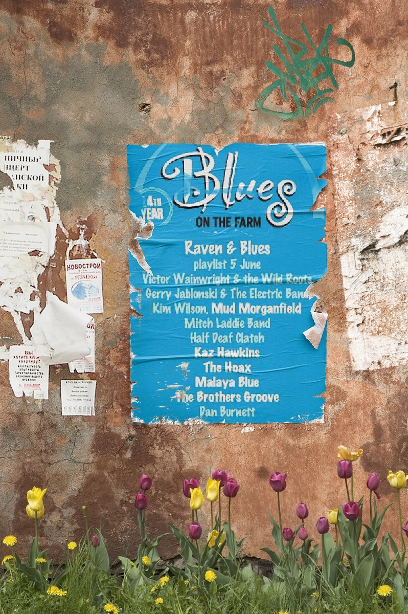 Raven and Blues 5 June 2015