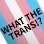 Artwork for EP27: Trans Pride Brighton 2019 and BORIS JOHNSON ARE YOU KIDDING ME?