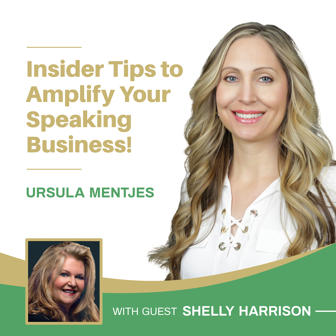 EP149: Insider Tips to Amplify Your Speaking Business with Shelly Harrison