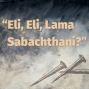 """Artwork for Episode 28:""""Eli, Eli, Lama Sabachthani?"""""""