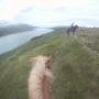 Artwork for Pony Daze - Trekking In Iceland, Day 2