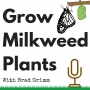 Artwork for GMP 28: Grow Milkweed Plants is a verb. Lets get started!