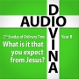 Artwork for What is it that you expect from Jesus? - 2nd Sunday of Ordinary Time, Year B