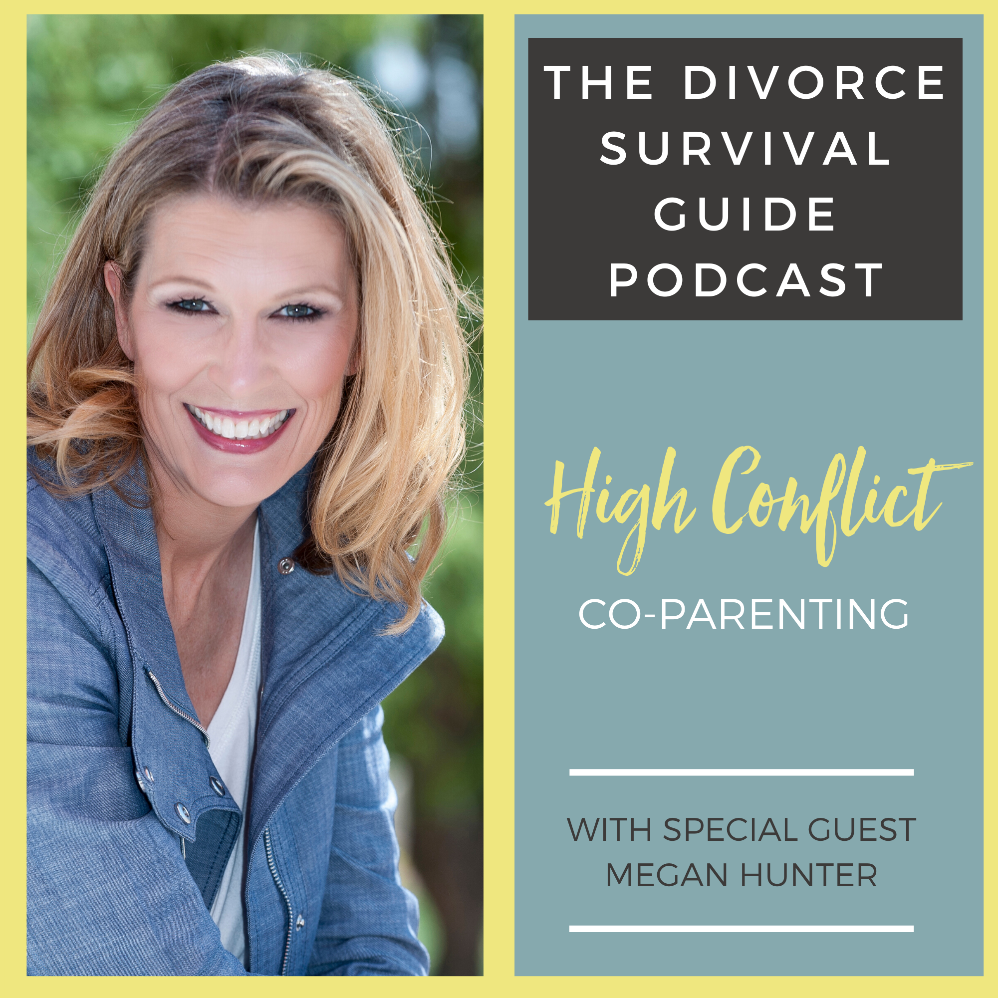 The Divorce Survival Guide Podcast - High-Conflict Co-Parenting with Megan Hunter