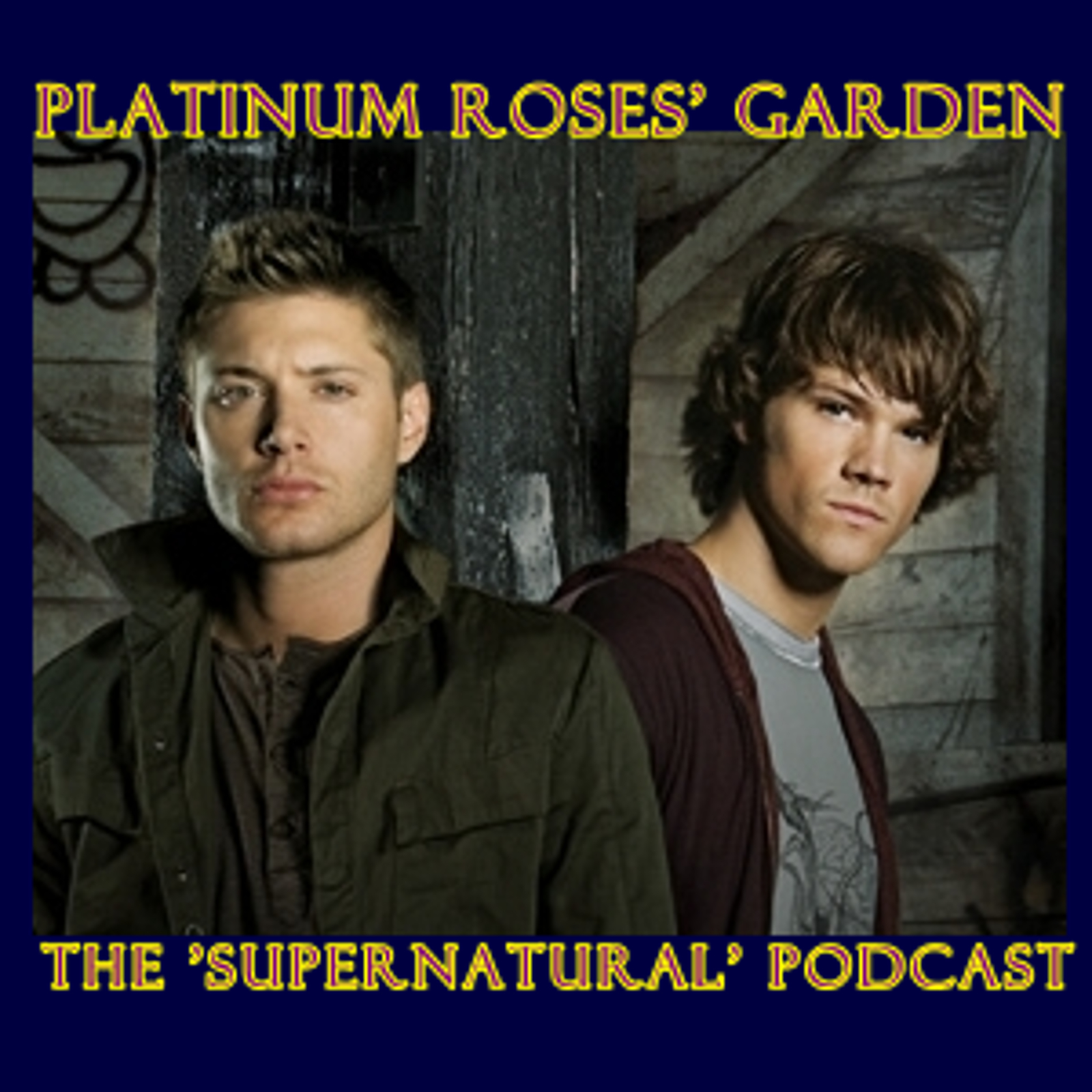 Artwork for Platinum Roses' Garden - January 6 2013