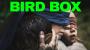 Artwork for Die Philosophie von Bird Box
