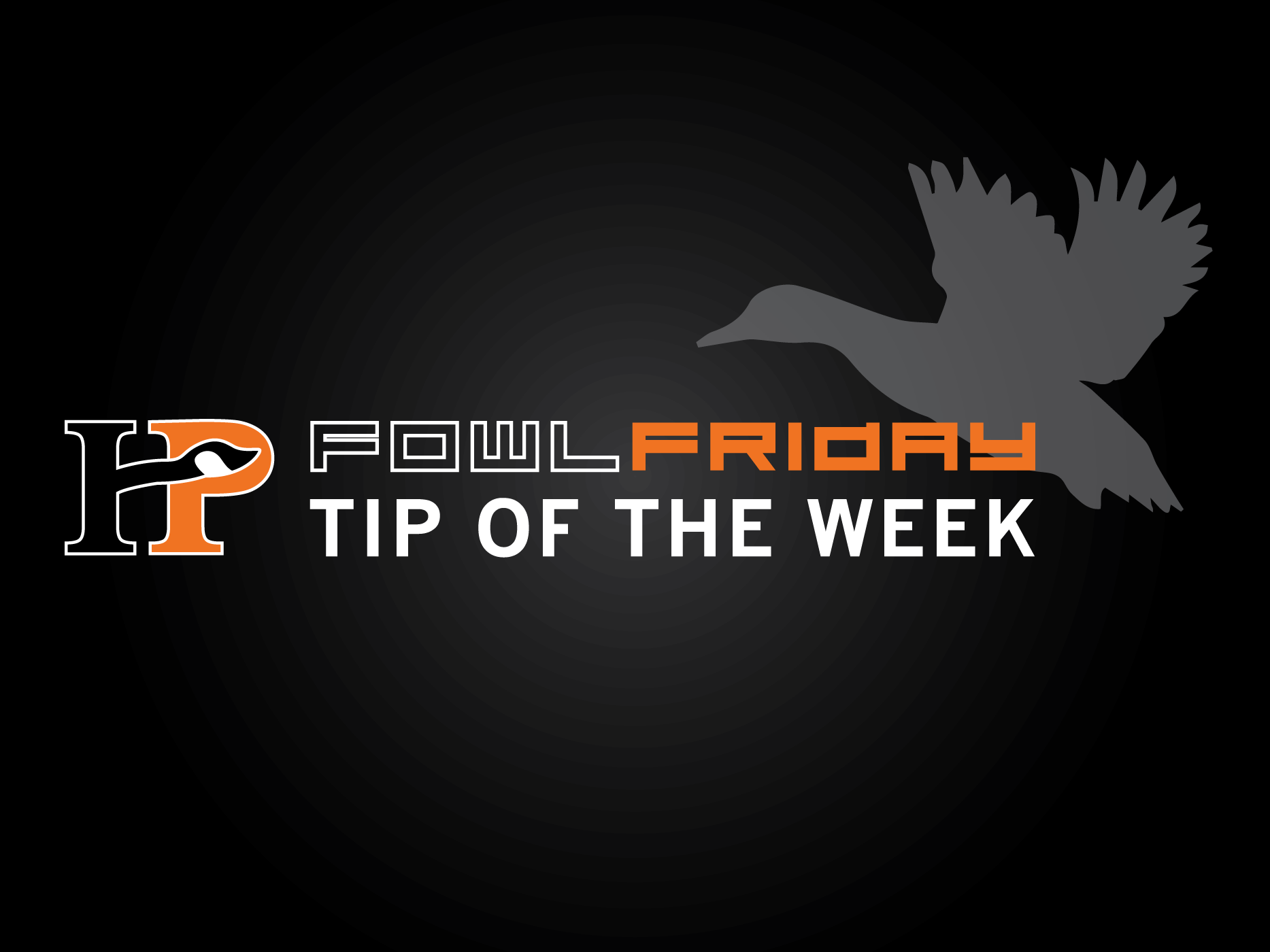 Fowl Friday Tip of the Week: Silhouette Decoys