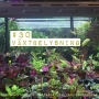 Artwork for 30. Växtbelysning. Om LED-lampor och lysrör, att odla året runt och tips till nybörjare.