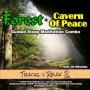 Artwork for Forest Walk - Cavern Of Peace Sleep Meditation Combo