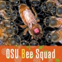 Artwork for 42 OSU Bee Squad - Honey Bees and Conservation (Research Retinue)