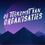Artwork for 5 Pilaren van Organisatieverandering met gast Marnix van Wendel-de Joode