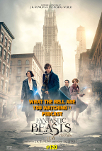 """#120 - """"Fantastic Beasts and Where to Find Them"""" (2016)"""