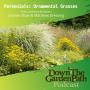 Artwork for Perennials: Ornamental Grasses