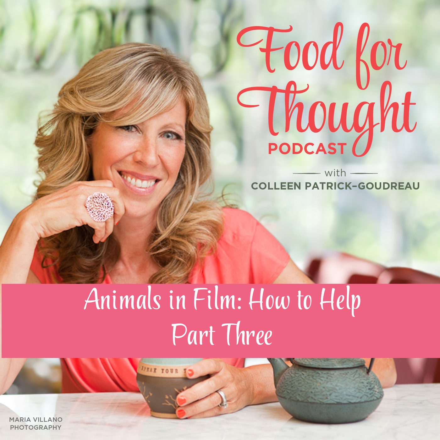 Animals in Film - Part 3: How to Help