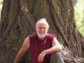 The Trees Are Calling-  An Interview with Rainforest Defender John Seed