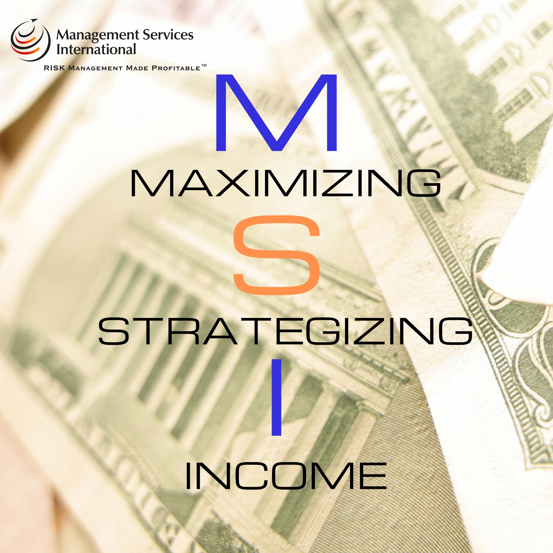 Maximizing Strategizing Income aka MSI show art