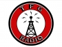 Artwork for TFG Radio Bonus Episode 4 - David Witek