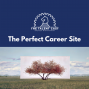 Artwork for The Perfect Career Site